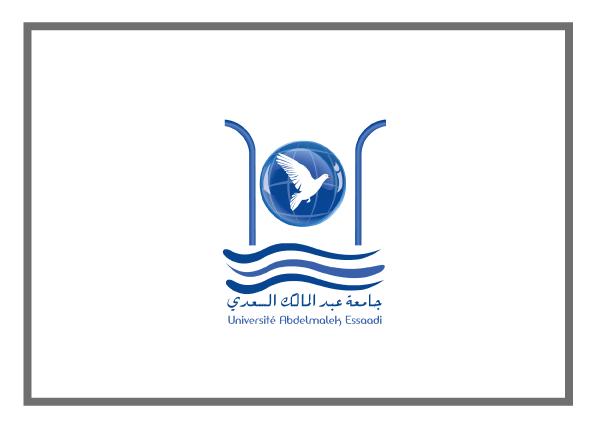 University of Abdelmalek Essaadi